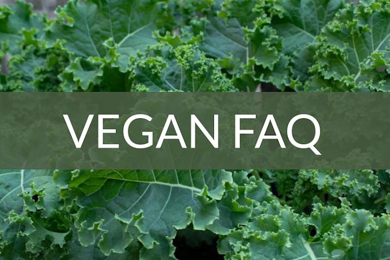 Vegan FAQ