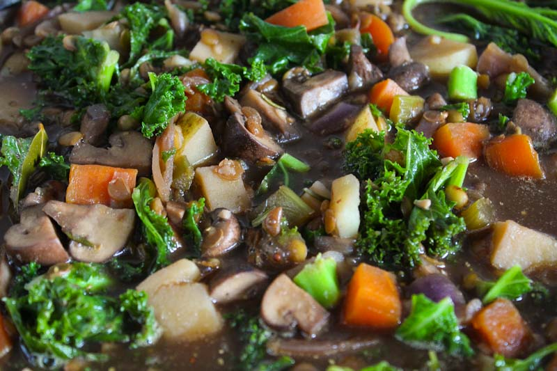 Vegan Stew Close-Up