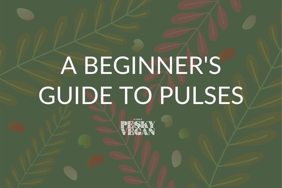 Beginner's Guide to Pulses Feature