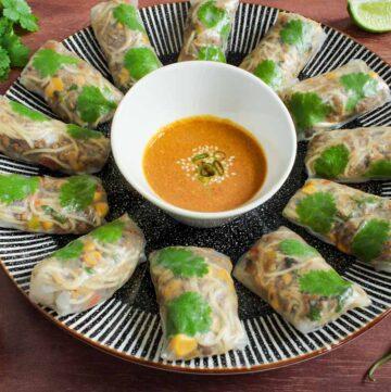 Vegan Rice Paper Rolls and Dipping Sauce