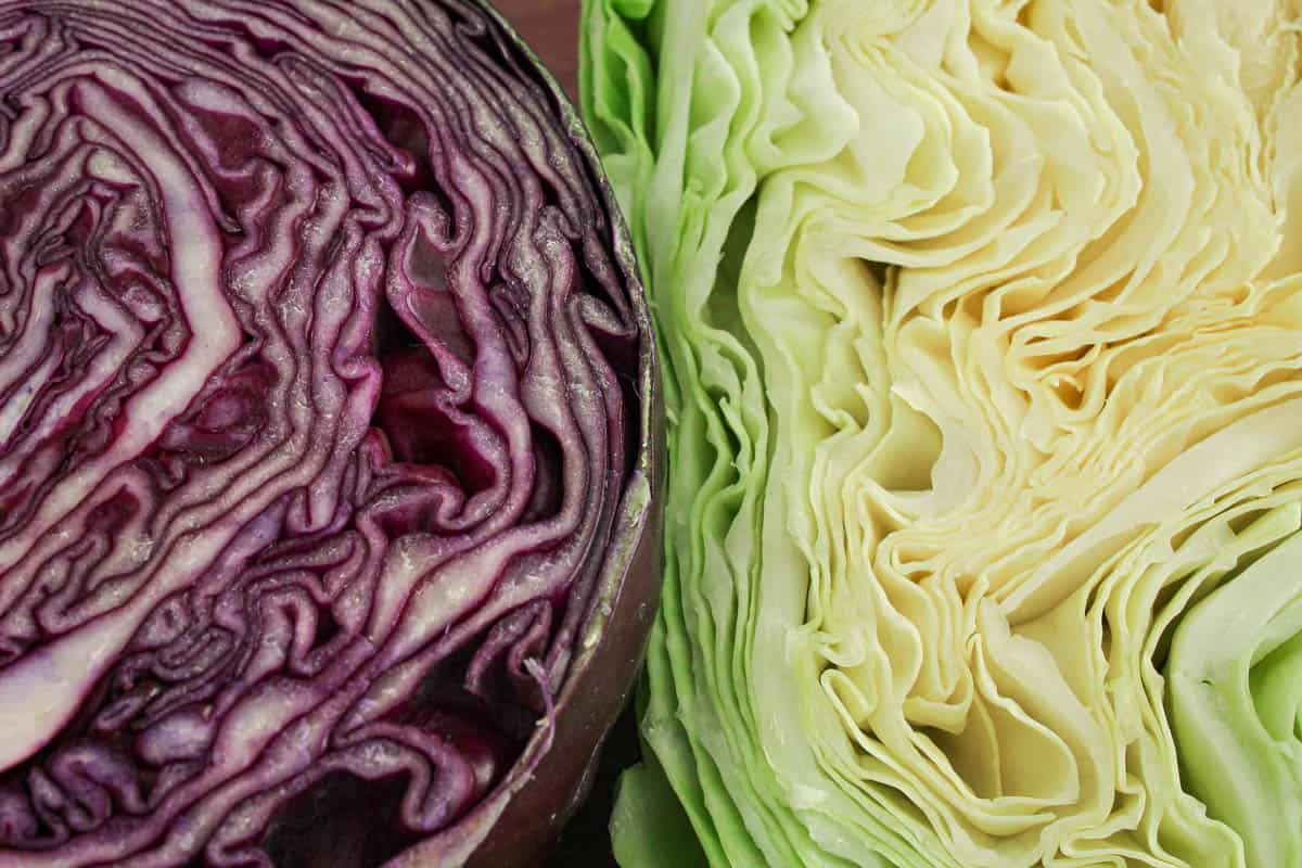 Red and White Cabbage Sliced