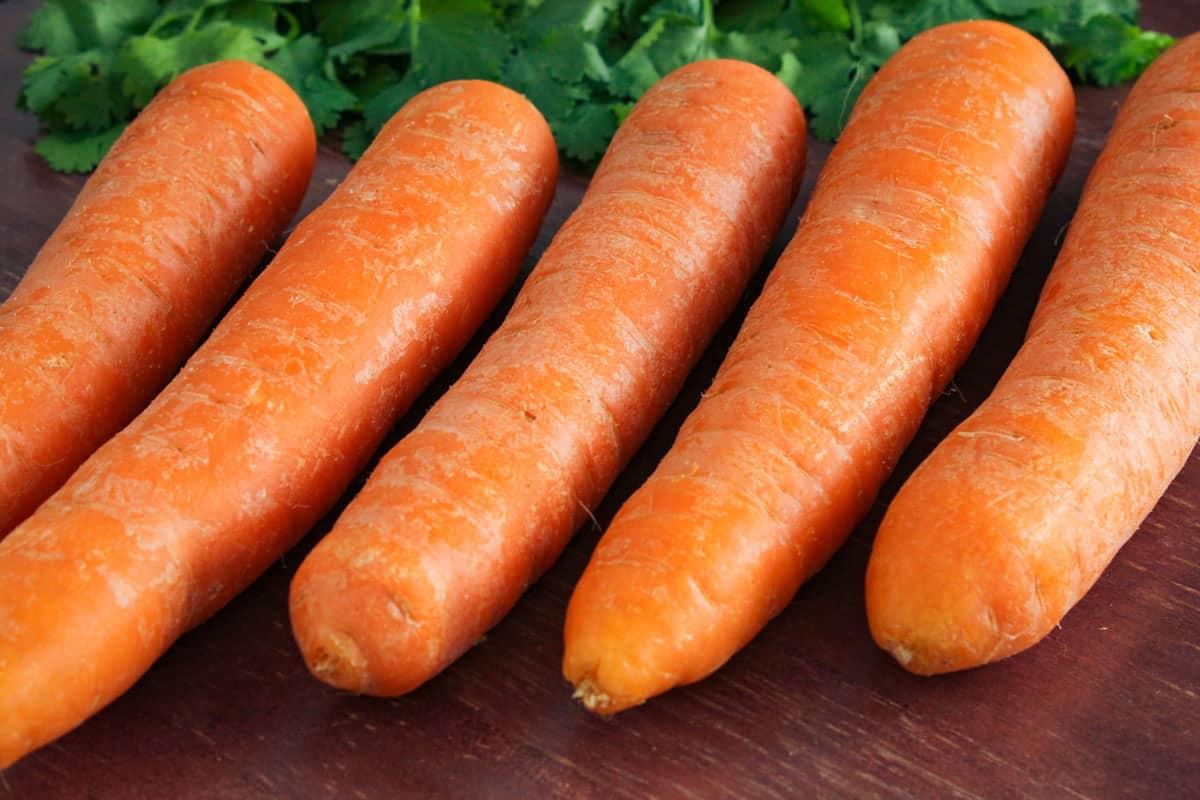 Carrots Close-Up