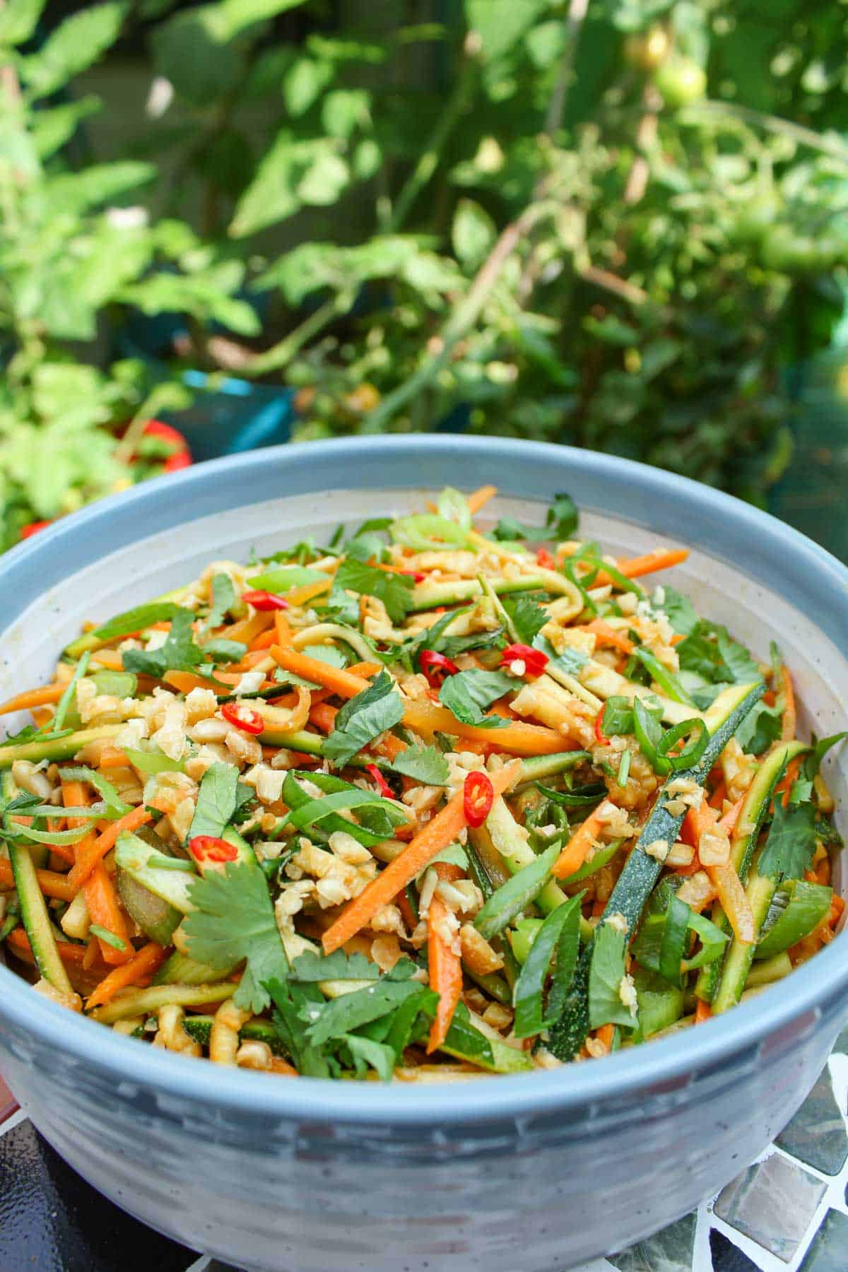 Courgette Salad with Peanut Dressing, Chilli, Coriander