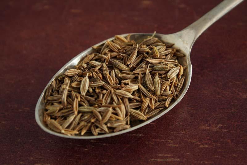 Cumin Seeds on Spoon