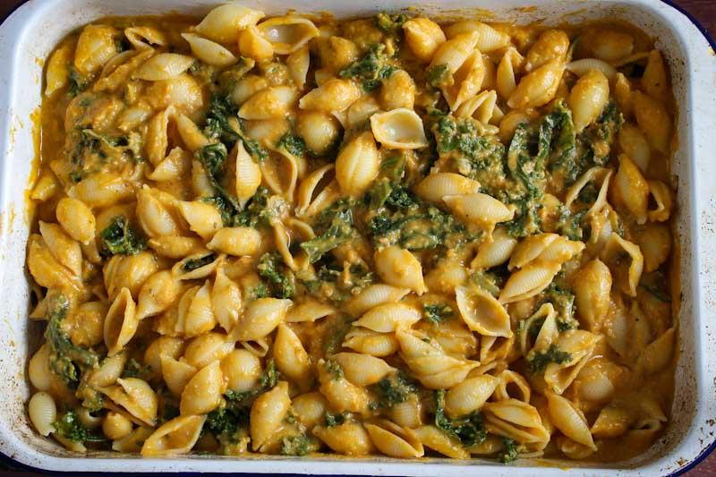 Pasta Shells with Kale and Butternut Squash Sauce