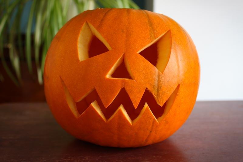 Carved Pumpkin Face Halloween