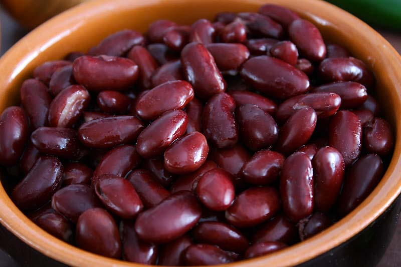 Red Kidney Beans in Bowl