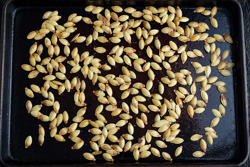 Roasted Squash Seeds on Baking Tray