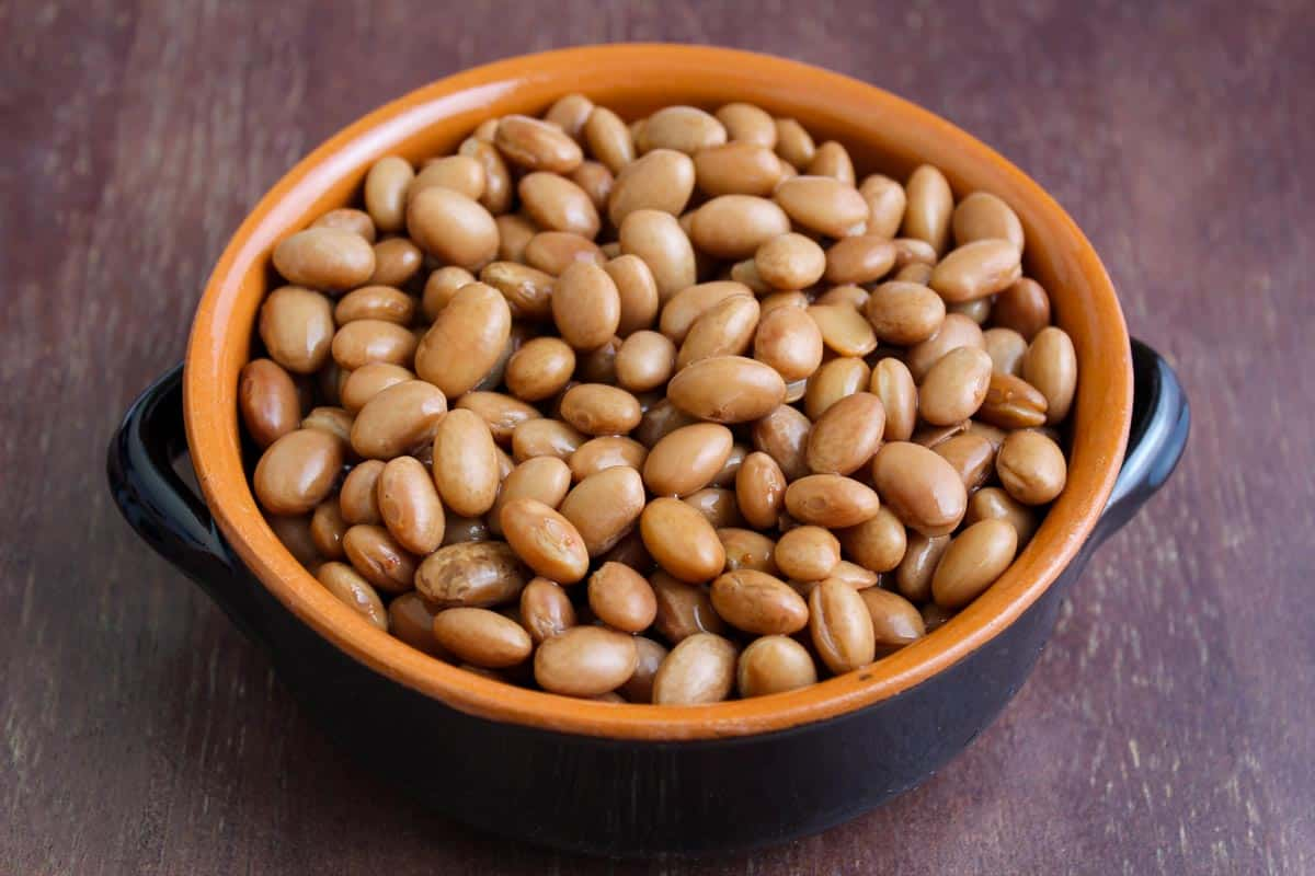 Pinto Beans in Bowl Close-Up